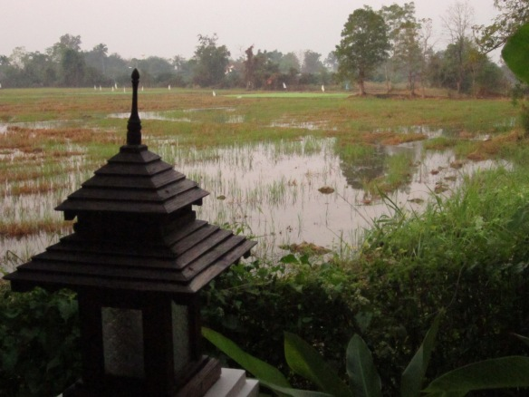 Upon returning back to Chiang Mai, I said goodbye to the rice field in my backyard and moved into...