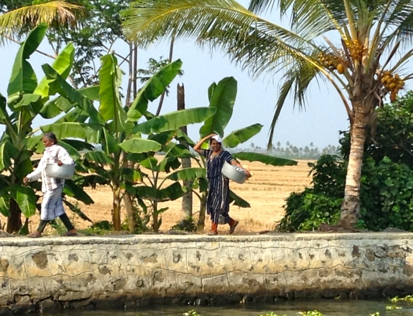 Backwaters life