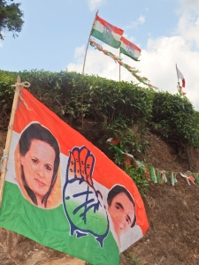 An election was taking place,  so political party signs and posters of people running for office were everywhere.