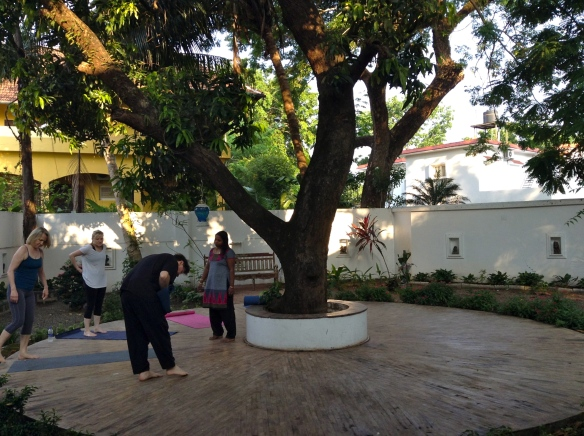 The next morning I had a yoga class here under the mango tree at Secret Garden