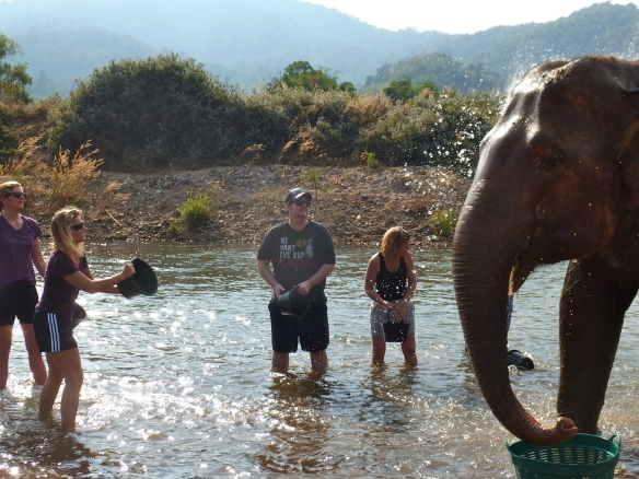 Playing Songkran with elephants.