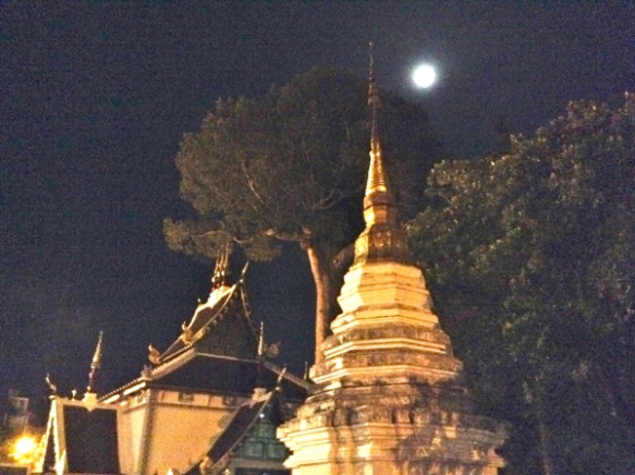 The full moon and big tree at Wat Chedi Luang